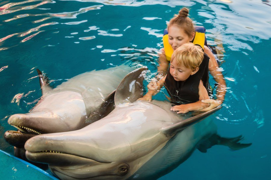 Mum with kid floats with dolphins in pool